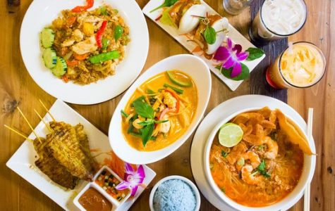 Rice Passions food review–best Thai food in Mass.?